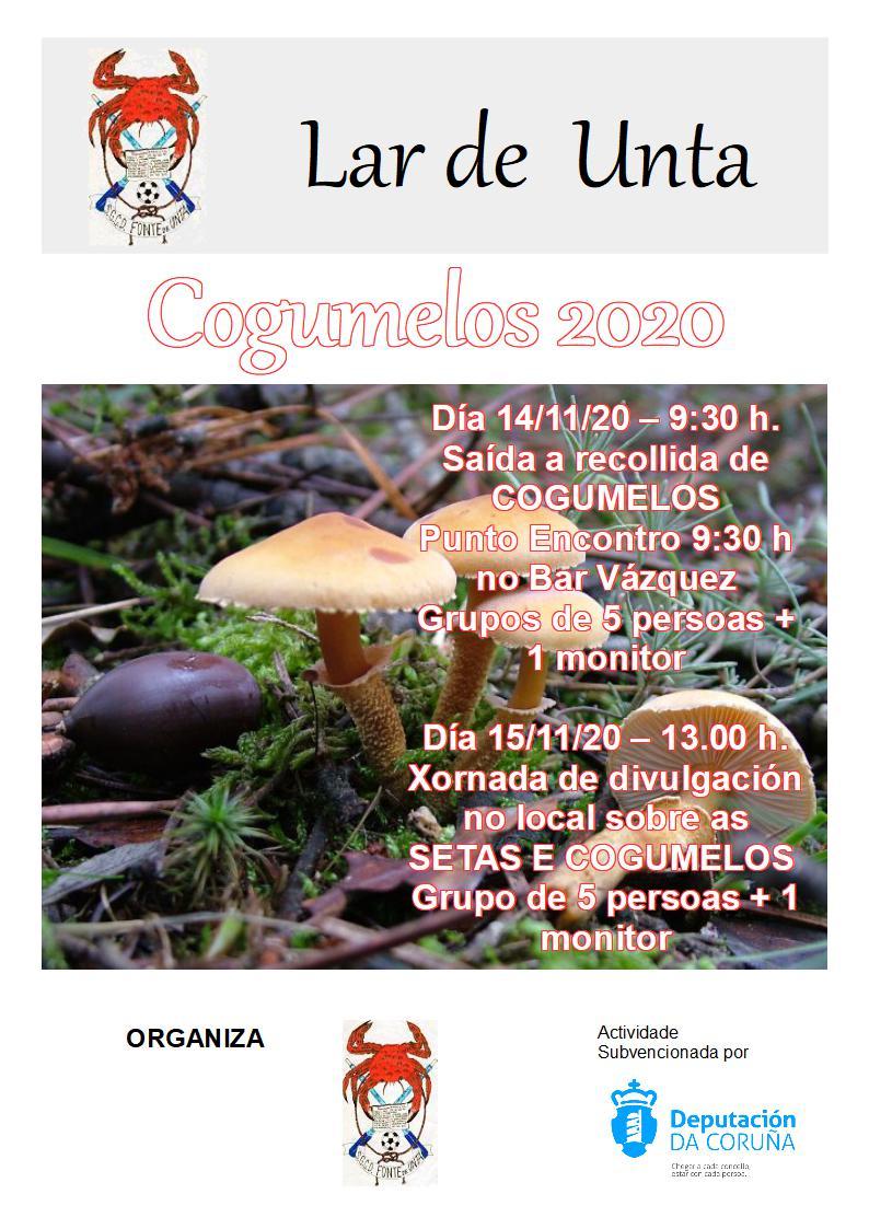 Cogumelos 2020 : Saída a Aranga e Irixoa