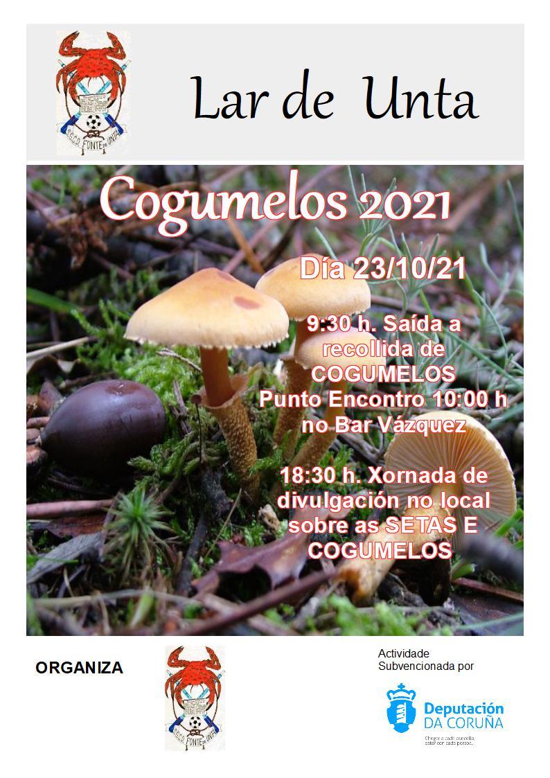 Saída aos Cogumelos o día 23/10/2021